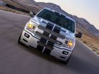 Ford-SHELBY-F-150-SUPER-SNAKE-SPORT-08