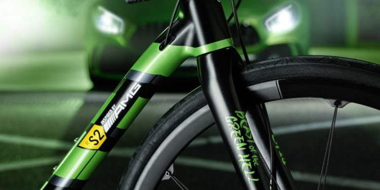 "ROTWILD racing bike R.S2 Limited-Edition ""Beast of Green Hell"""